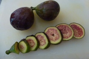 Fickle Figs