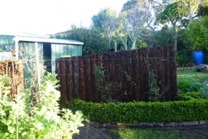 I thought replacing a ponga fence would be simple…
