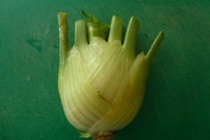 Growing and Cooking Bulb Fennel