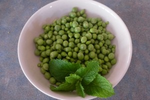 Peas fresh from the Garden
