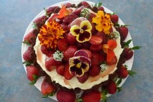Ginger Strawberry Cheesecake