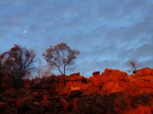 Day 2: Uluru