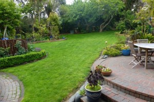 The Lawn Wars – will it ever end?