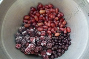 Blueberries, blackberries and grapes