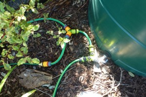 Gravity-Fed Garden Irrigation from Water Tanks