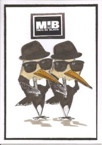 Crazy Birds: Men in Black
