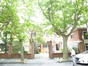 Tree lined streets of French Concession