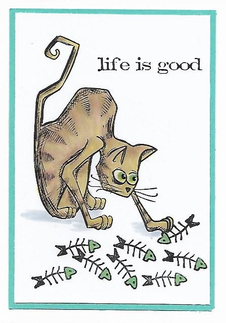 Crazy Cat: Life is Good