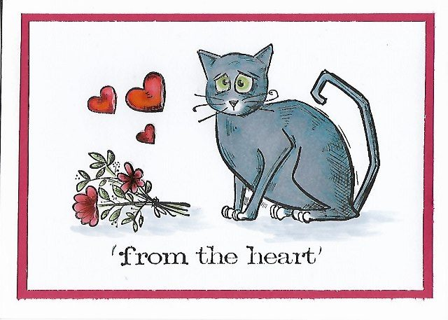 Crazy Cat: from the heart