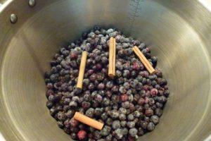 Frozen blueberries and cinnamon quills