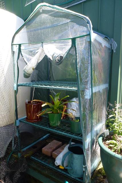 Plastic greenhouse disintegrates quickly