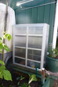 Mini Polycarbonate Greenhouse
