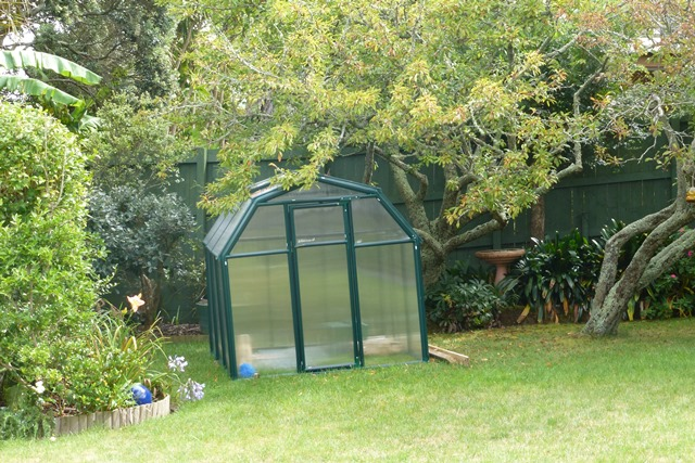 Surprise location of erected greenhouse