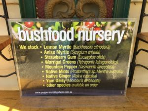 Bushfood plants available