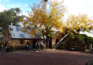 Adelaide Day Trip: Barossa Valley