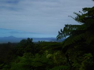 View from Alexandra Lookout