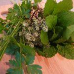 Fresh Spring Herbs