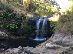 Oakley Creek Walkway (1)