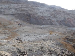 Plateau Eskimobugt