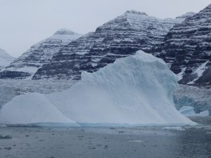 Iceberg spotting at Vikingsbugt