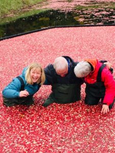 Taking the Cranberry Plunge