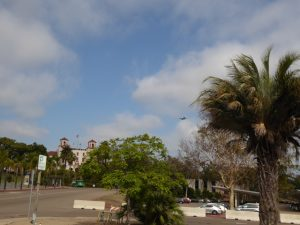 Plane photo bombing Balboa Park