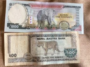 Nepalese Rupees