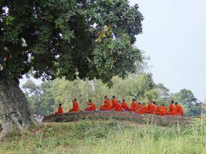 Monks at Kapilvastu