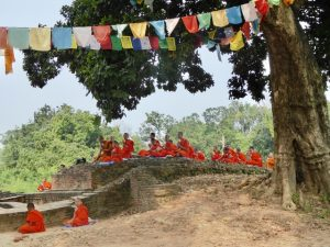 Monks at Kapilvastu