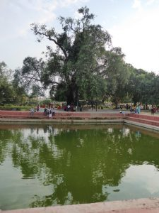 Central Pond and Bodhi Tree, Lumbini
