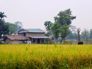 Village Walk near Chitwan National Park