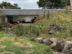New bridge at Richardson Road enabling the connecting of parks