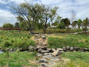 Stepping stones to picnic area