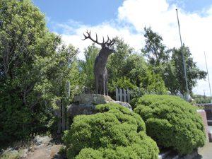 Mossburn - deer capital of NZ