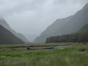 Down at the Routeburn Flats