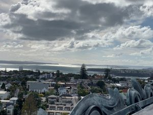 Auckland city and harbour (3)