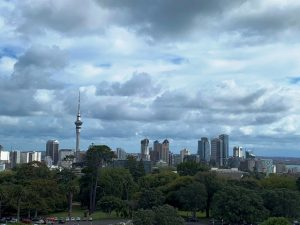 Auckland city from Museum Roof (south)