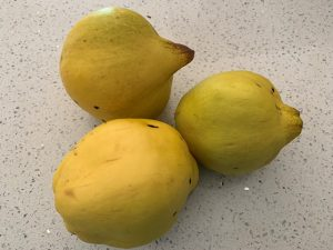 Choose quinces with a good yellow colour