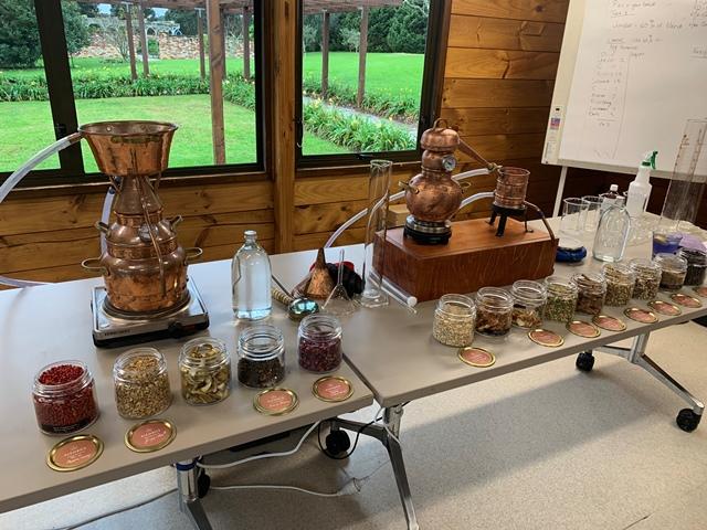 Gin Immersion Workshop